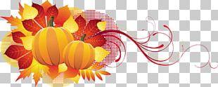 Harvest Festival Autumn Leaves PNG