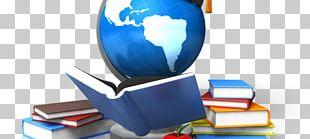 Educational Consultant Teacher International Education Student PNG