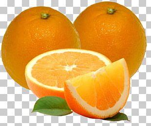 Mandarin Orange Cara Cara Navel Orange Juice Valencia Orange PNG