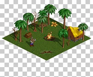 Heroes Of Might And Magic III Might And Magic III: Isles Of Terra Palm Kingdoms Tree Jungle PNG