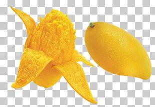 Juice Mango Seed Auglis Mangifera Indica PNG