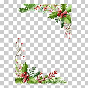 Christmas Card Greeting Card Gift PNG