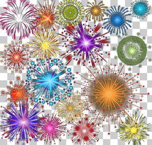 Dahlia Floral Design Pattern PNG