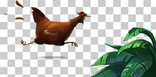 Rooster Chicken As Food Plinga Game PNG