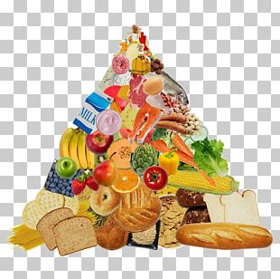 Food Pyramid Eating Food Group Paleolithic Diet PNG