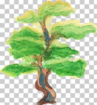 Tree Watercolor Painting PNG