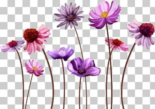 Flower Desktop Display Resolution PNG