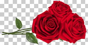 Rose Red Teleflora Flower Bouquet PNG