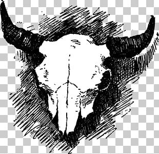 Skull Cattle Visual Arts PNG