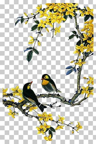 Bird-and-flower Painting Chinese Painting Gongbi PNG