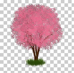 Shade Tree Regina De Luporum Shrub Branch PNG