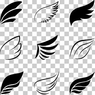 Bird Flight Angel Wing PNG