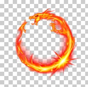 Flame Dragon Fire PNG