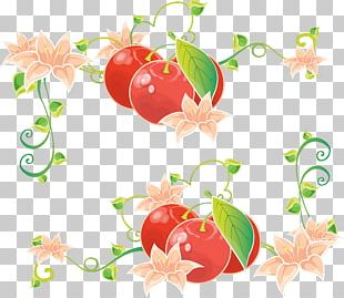 Floral Design Petal Leaf PNG