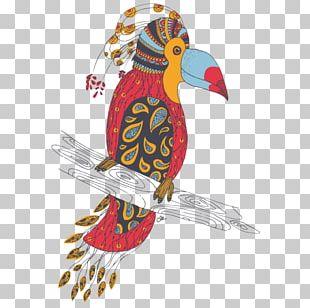 Bird Parrot Macaw Beak Animal PNG