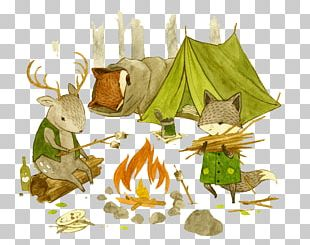 Adventures With Barefoot Critters Bird By Bird Childrens Literature Alphabet Book Illustration PNG