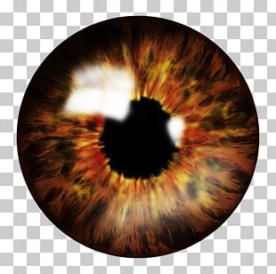Eye Computer Icons PNG