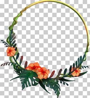 Flower Tropics Frames Photography PNG
