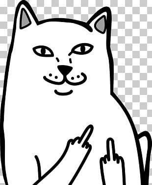 Cat Middle Finger The Finger T-shirt PNG