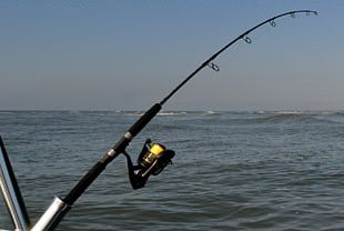 Fishing Rods Recreational Fishing Fisherman Casting PNG