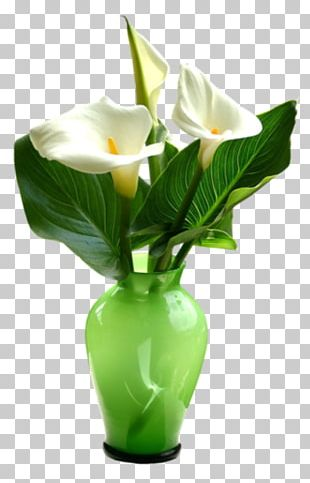 Flower Vase Floral Design PNG