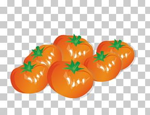 Vegetable Fruit Bell Pepper Onion PNG