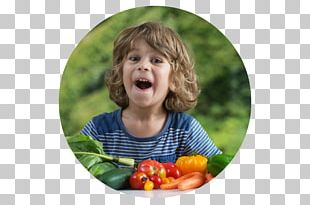 Healthy Diet Eating Meal Child PNG