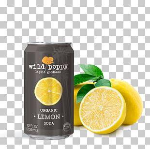 Lemon-lime Drink Juice Fizzy Drinks Lemonade PNG