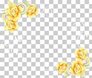 Text Box Cut Flowers Computer Mouse Rose Family PNG