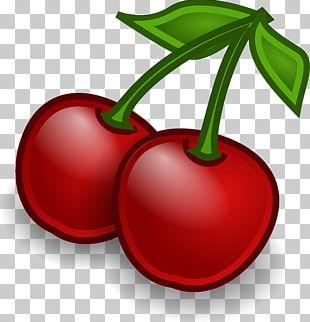Cherry Drawing Cartoon PNG