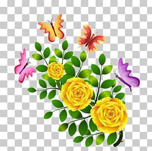 Garden Roses Butterfly Floral Design Flower PNG