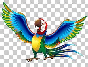 Parrot Cartoon Mural PNG