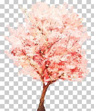Tree SketchUp Plant Webtoon Watercolor Painting PNG