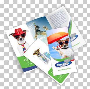 Brochure Mockup Template PNG