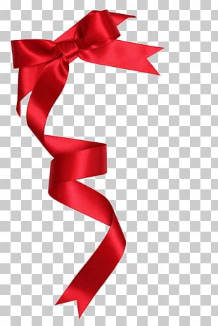 Ribbon Gift Shoelace Knot Stock Photography PNG