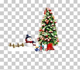 Christmas Tree Christmas Ornament Christmas Decoration Gift PNG
