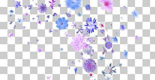 Petal Flower Editing PNG