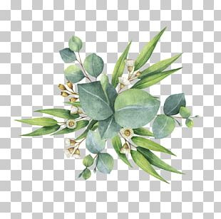 Watercolor Painting Flower Bouquet Leaf PNG