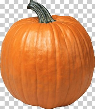 Single Pumpkin PNG