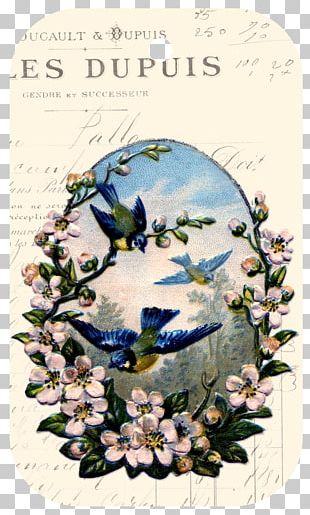 Bird Flower Paper Floral Design PNG