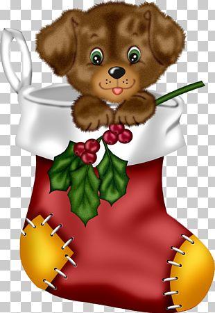 Maltese Dog Bichon Frise Puppy Christmas PNG