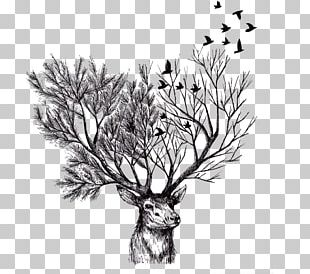 Deer Paper Tree Drawing Illustration PNG