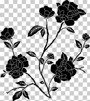 Flower Black And White Drawing PNG