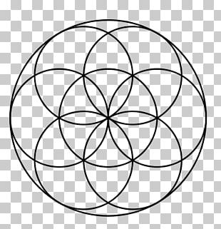 Sacred Geometry Circle Symbol Seed Of Life Acupuncture PNG