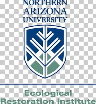 Northern Arizona University Arizona State University Northern Arizona Lumberjacks Men's Basketball PNG