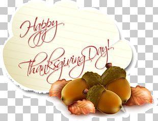 Thanksgiving Birthday Holiday Greeting Card PNG