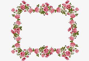 Border Floral Design PNG