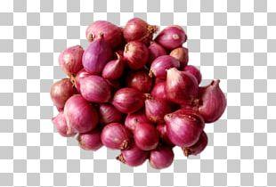 Sambar Shallot Potato Onion Indian Cuisine Vegetable PNG
