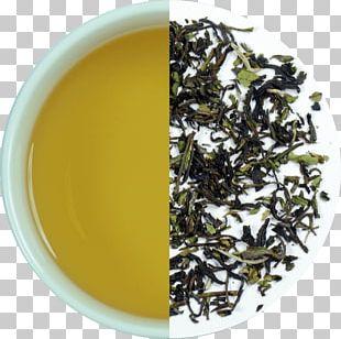 Darjeeling Tea Nilgiri Tea White Tea Gyokuro PNG