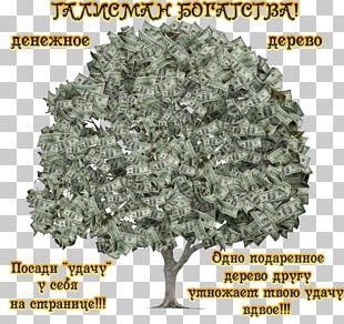 Money Bag Finance Accounting Loan PNG